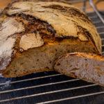 pane di san Francisco planetaria